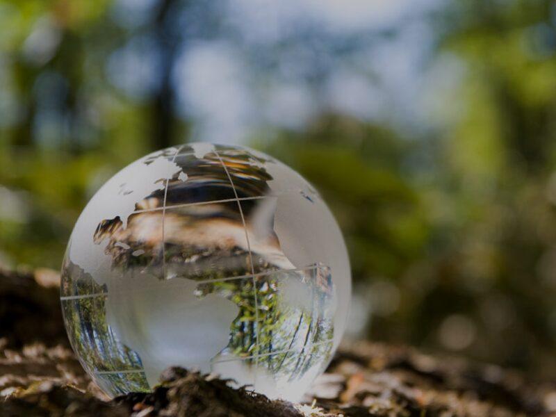 Novas perspectivas no processo administrativo ambiental