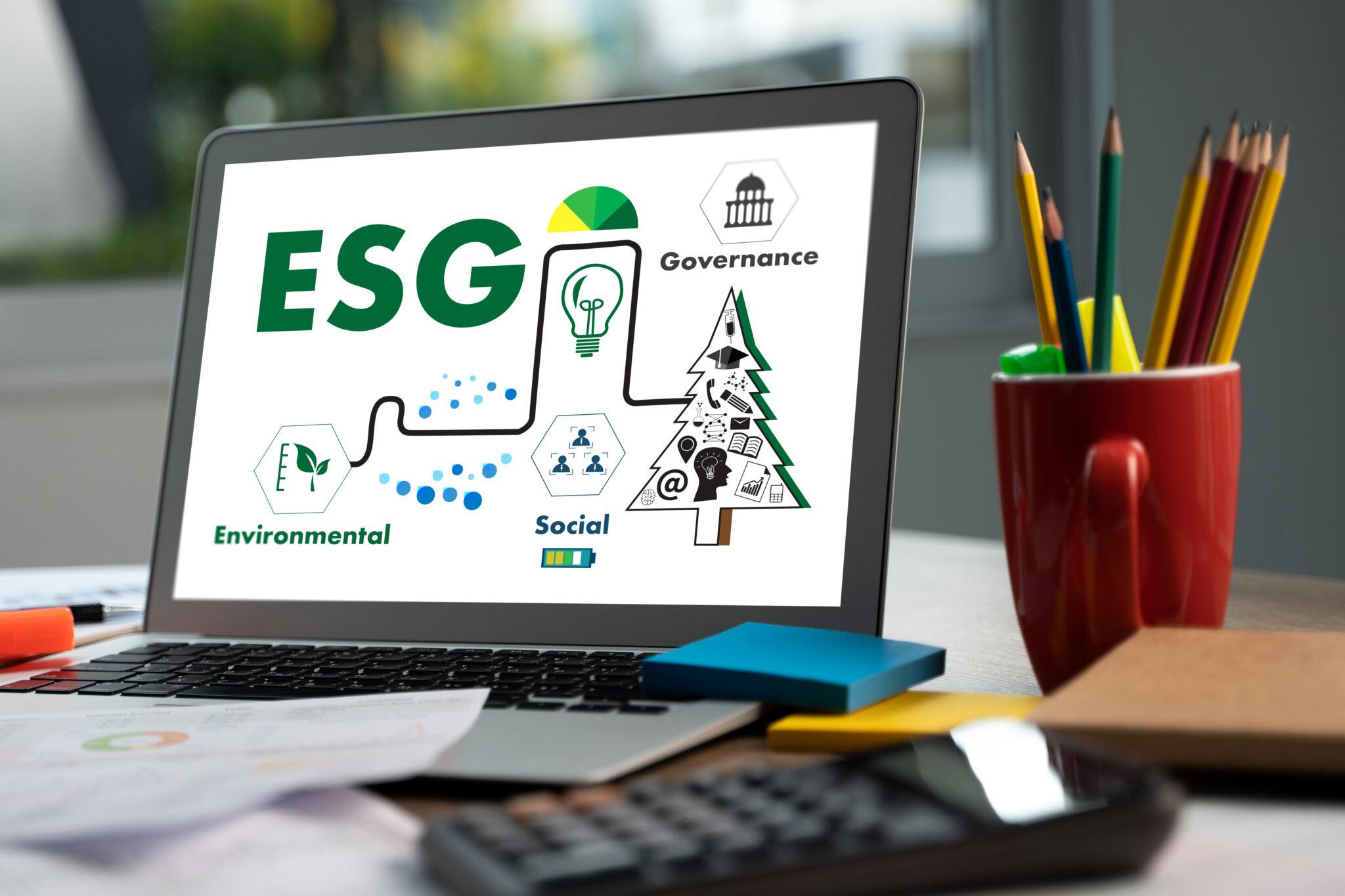 A pauta ESG e sua influência no mercado de capitais