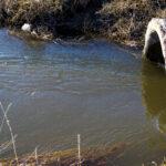 Aspectos importantes do crime de poluição ambiental envolvendo empresas do setor de saneamento